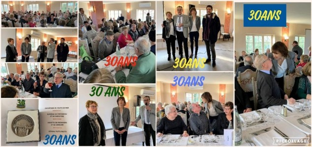 2.Collage 2019-12-20 19_58_59 (Copier)