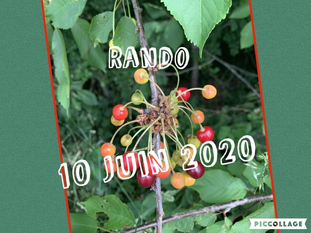 Collage 2020-06-10 19_16_44 (Copier)